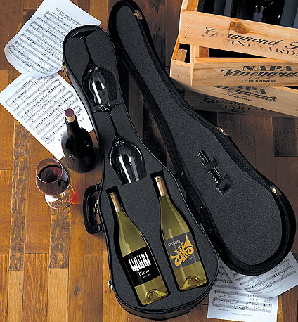 unique-christmas_gift_ideas_violin_travelset